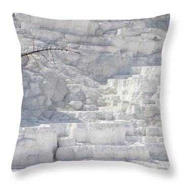 Throw Pillow featuring the photograph Mammoth Trees by J L Woody Wooden