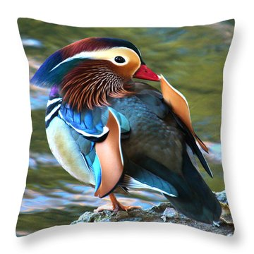 Mandarin Duck Throw Pillow by Paul Marto
