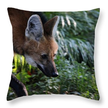 Maned Wolf Throw Pillow by Karol Livote