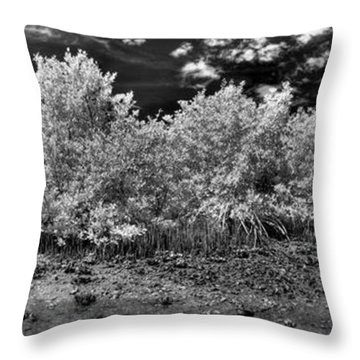 Mangove Island Throw Pillow