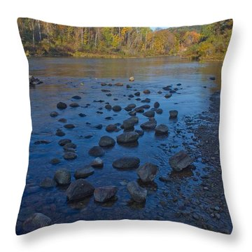 Manistee River Throw Pillows
