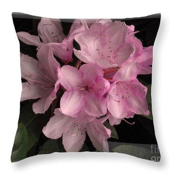 Many Splendored Blooms Throw Pillow by Judee Stalmack