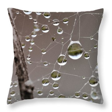 Many Worlds In One Small Space Throw Pillow