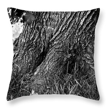 Throw Pillow featuring the photograph Maple by Dan Wells
