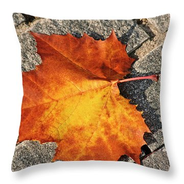 Maple Leaf In Fall Throw Pillow by Carolyn Marshall