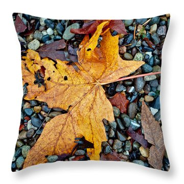 Throw Pillow featuring the photograph Maple Leaf On The Rocks by Tikvah's Hope