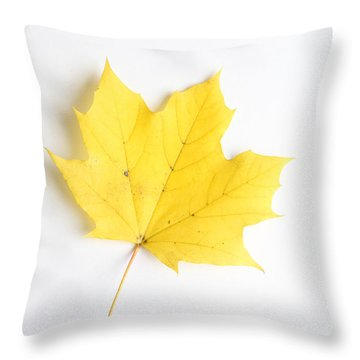 Maple Leaf Throw Pillow by Photo Researchers
