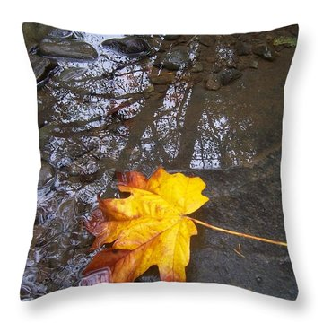 Throw Pillow featuring the photograph Maple Leaf Reflection 1 by Peter Mooyman