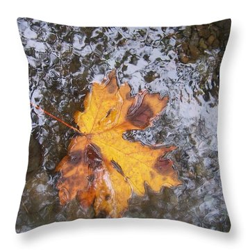 Throw Pillow featuring the photograph Maple Leaf Reflection 2 by Peter Mooyman