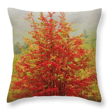 Maples In The Mist Throw Pillow by Roupen  Baker