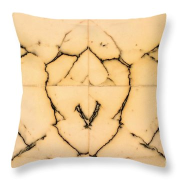 Marble Face Throw Pillow