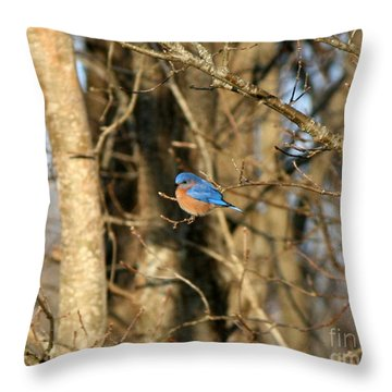 March Bluebird Throw Pillow by Neal Eslinger