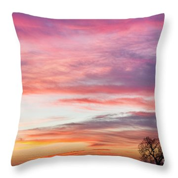 March Countryside Sunrise  Throw Pillow by James BO  Insogna