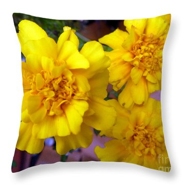 Marigold 3 Throw Pillow by Alys Caviness-Gober