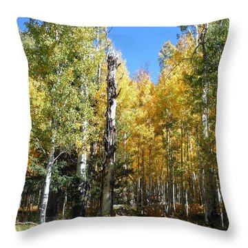 Throw Pillow featuring the photograph Marker Tree by Fred Wilson