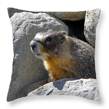 Marmot Emerging From Den Throw Pillow