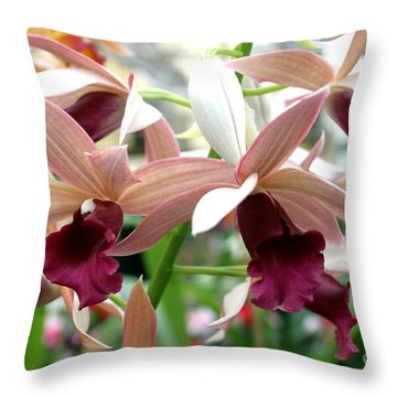 Throw Pillow featuring the photograph Maroon Bloom by Debbie Hart