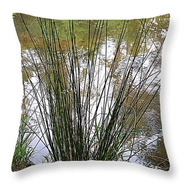 Throw Pillow featuring the photograph Marsh Grass by Renee Trenholm