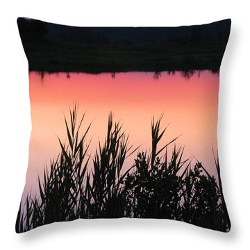Throw Pillow featuring the photograph Marsh Sunset by Clara Sue Beym