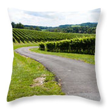 Maryland Vineyard Panorama Throw Pillow by Thomas Marchessault