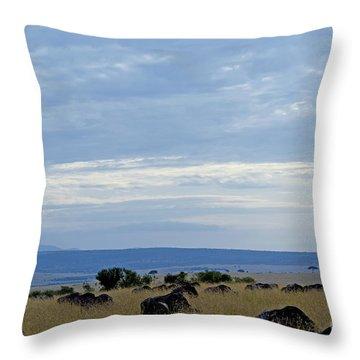 Masai Mara Throw Pillow by Pravine Chester