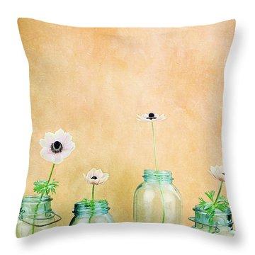 Mason Jars Throw Pillow by Stephanie Frey