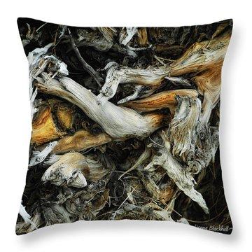 Mass Grave Throw Pillow by Donna Blackhall