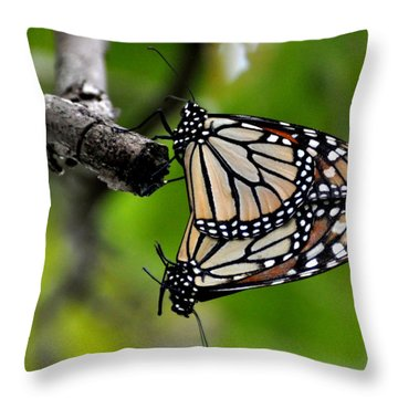 Mating Monarchs Throw Pillow by Marty Koch