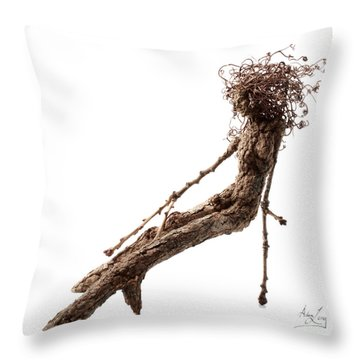 Matutinal Throw Pillow by Adam Long