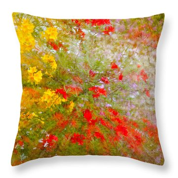May Impression Throw Pillow by Bobbie Climer