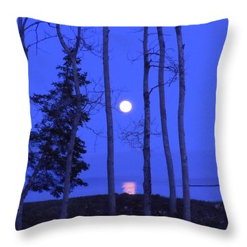 May Moon Through Birches Throw Pillow by Francine Frank