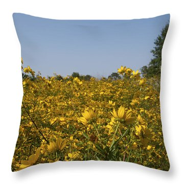 Throw Pillow featuring the photograph Meadow At Terapin Park by Charles Kraus