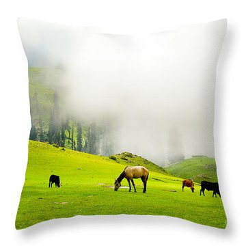 Meadows Of Heaven Throw Pillow by Syed Aqueel