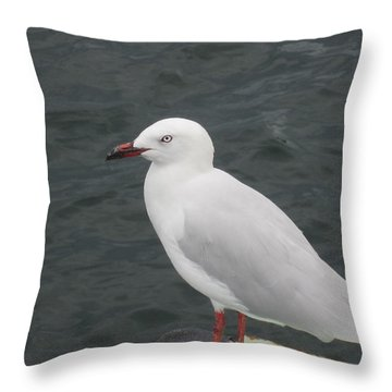 Throw Pillow featuring the photograph Mean Eye by Roberto Gagliardi