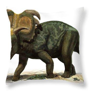 Medusaceratops Lokii, A Prehistoric Era Throw Pillow by Sergey Krasovskiy