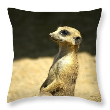 Meerkat Mother And Baby Throw Pillow
