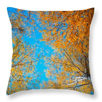 Meet In Heaven. Autumn Glory Throw Pillow by Jenny Rainbow