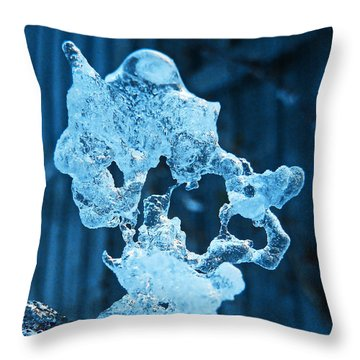 Throw Pillow featuring the photograph Meet The Ice Sculpture by Steve Taylor