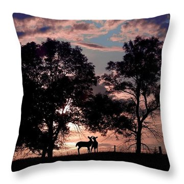 Meeting In The Sunset Throw Pillow by Bill Stephens