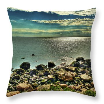 Meig's Point Throw Pillow by William Fields