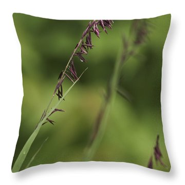 Melica Throw Pillow by Trevor Chriss