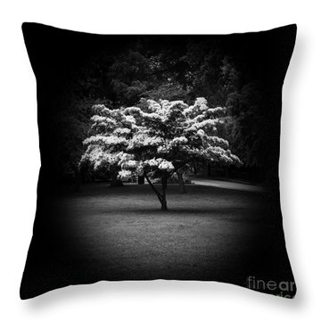 Memoir 2 Throw Pillow by Luke Moore