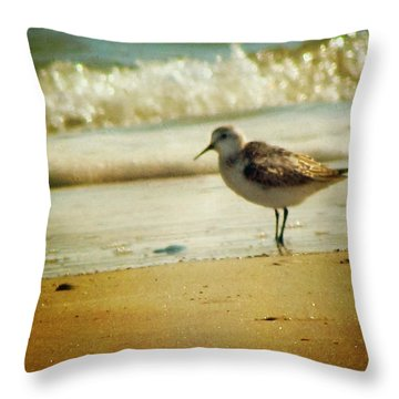 Memories Of Summer Throw Pillow by Amy Tyler