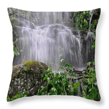 Mendenhall Glacier Flooding Waterfall Juneau Alaska 1542 Throw Pillow