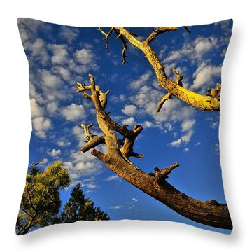 Mercy Throw Pillow by Skip Hunt