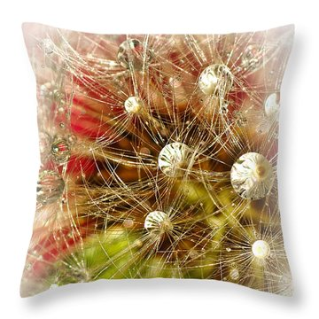 Merry Christmas Throw Pillow by Kaye Menner