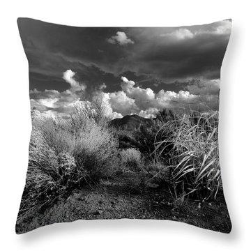 Mesa Dreams Throw Pillow