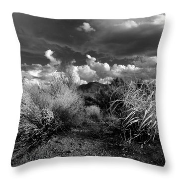 Mesa Dreams Throw Pillow