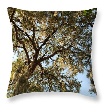 Mesmerizing Throw Pillow by Aimee L Maher Photography and Art Visit ALMGallerydotcom