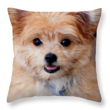 Throw Pillow featuring the photograph Mi-ki Puppy by Angie Tirado